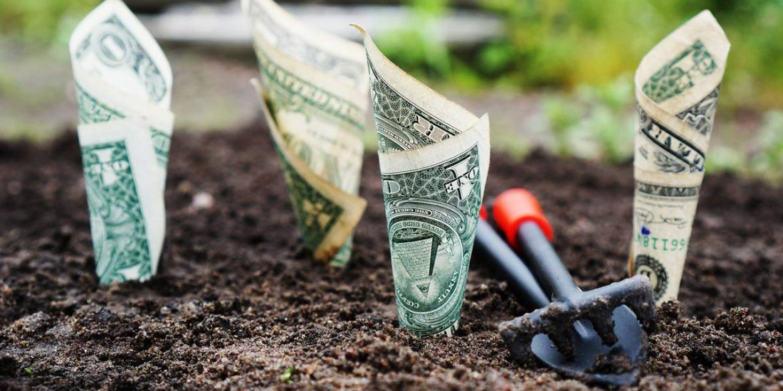How to Grow Your Money the Smart and Easy Way
